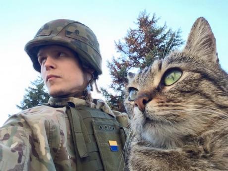 Украинские воины не покинут Широкино, пока террористы не прекратят обстрелы, - спикер АТО - Цензор.НЕТ 1564