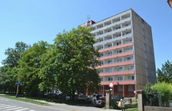 ВСловакии студентка изУкраины погибла при загадочных обстоятельствах