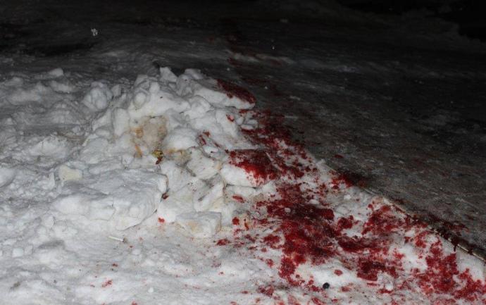 кровь-снег
