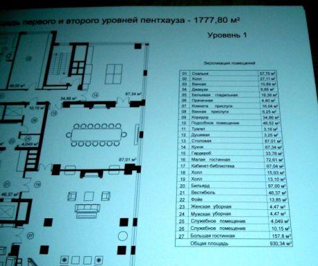 В Межигорье нашли документы о финансовых аферах на 200 млн. евро (фото, видео)