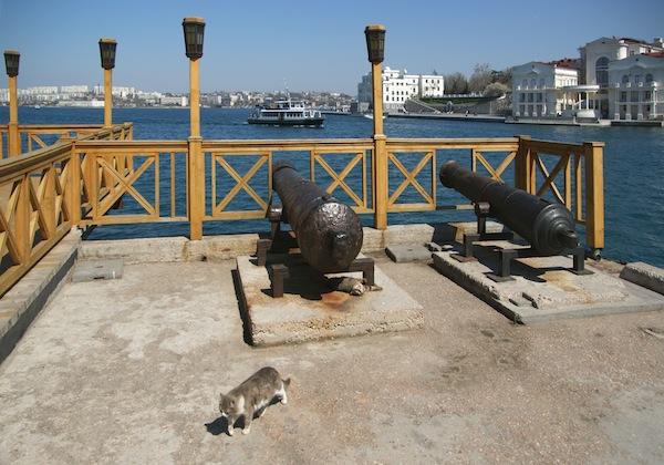 Гармати вкрадені з Севастополя для маєтку Януковича
