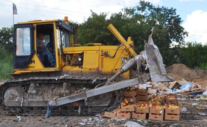 Под Самарой бульдозерами раздавили 46 тонн черешни ияблок