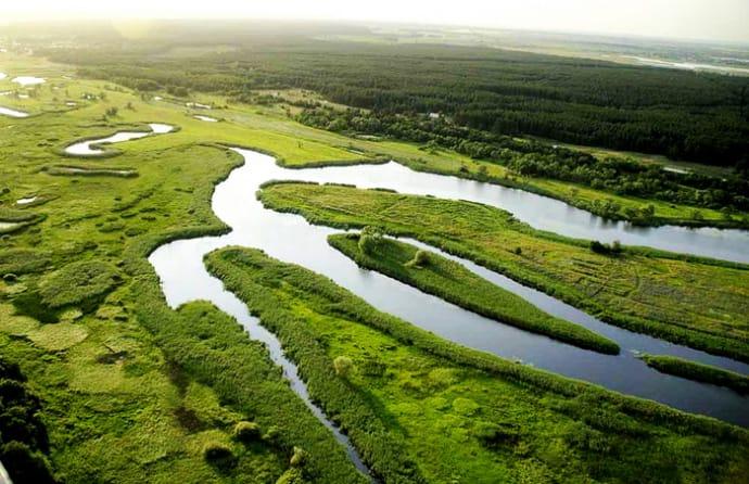 200 га земель природного парку незаконно вивели з держвласності