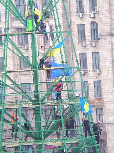 На елку повесили флаг. Фото Дмитрия Ларина