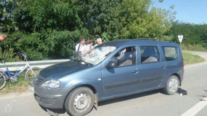 ВЖитомирской области врезультате ДТП погиб водитель повозки