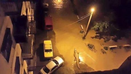 У Тбілісі повінь, загинули 8 людей. Із затопленого зоопарку розбіглися звірі. ФОТО 6