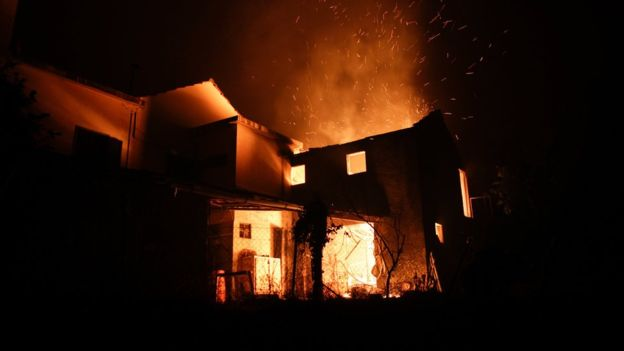 Через лісову пожежу вПортугалії загинуло щонайменше 43 людини