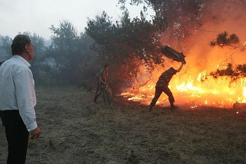 Местные пожарные команды, добровольцы-пожарные и ликвидация пожарной инспекции: Аваков представил реформу ГСЧС - Цензор.НЕТ 7734