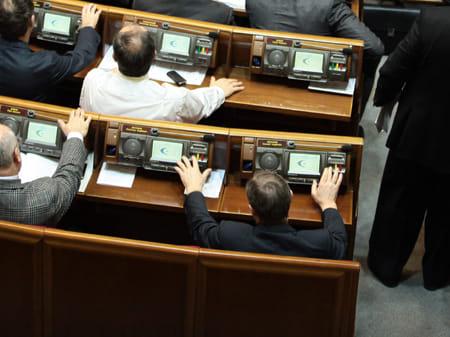 Регіонал Васильєв голосує за свого брата