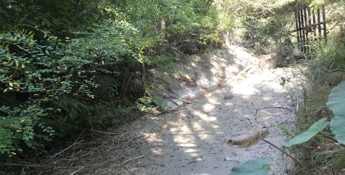 Висохле русло річки Танасу