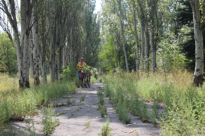 Тротуар на головній вулиці Залізного давно поріс бур'яном