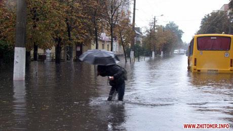 Фото: Житомир.info