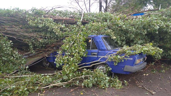 На Херсонщині буревій повалив дерева й пошкодив дахи | Українська правда