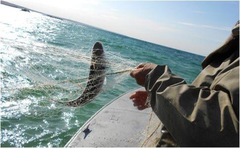 ВАзовском море ищут 2-х рыбаков