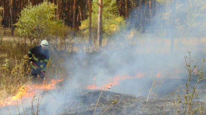 Орієнтовна площа пожеж складає 9,3 тис. га / ДСНС