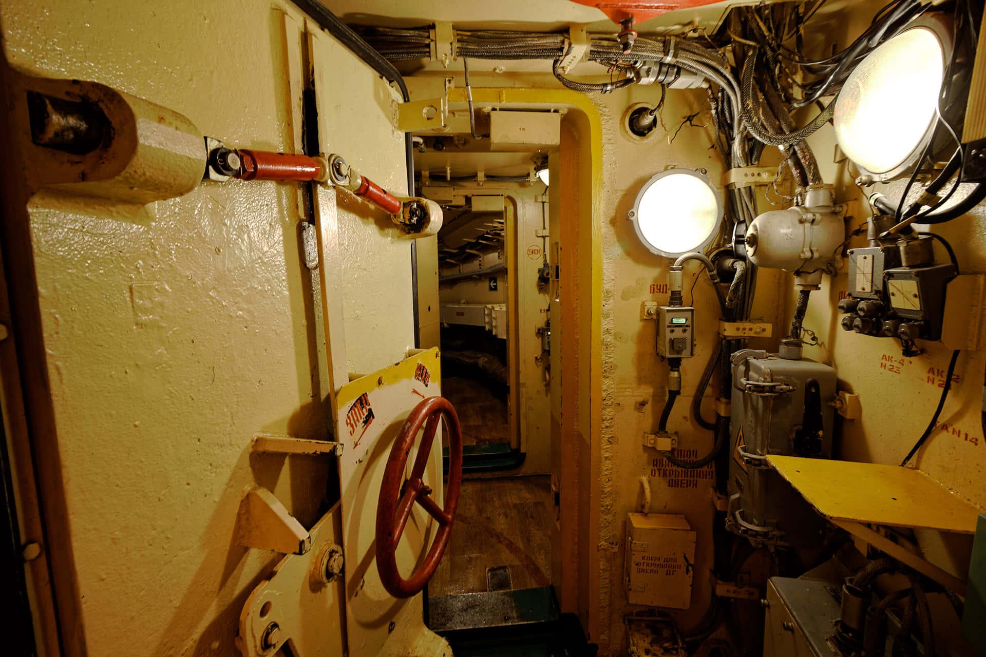 Из подземной шахты можно было выбраться на поверхность при помощи скрытых выходов, которые похожи на торпедные отсеки подводной лодки