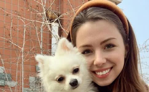 коронавирус у собаки