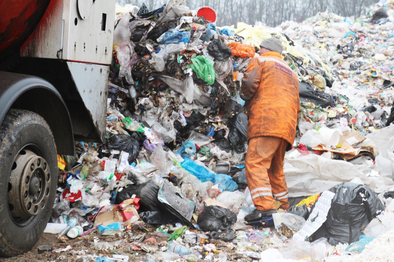 Чайки, ґави, лисиці, сморід. Як виглядає головний полігон сміття Києва та  України
