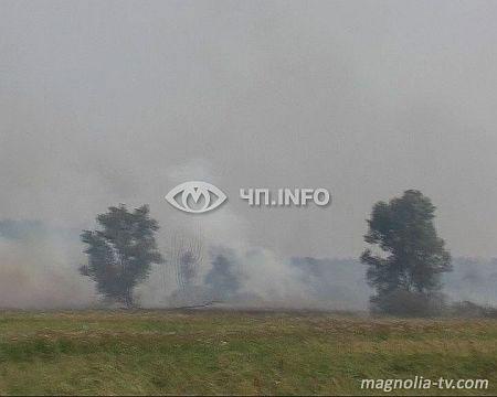 На Чернігівщині все ще горять торфовища. Фото