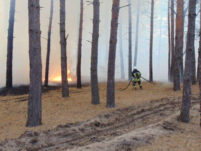 Рятувальники працюють на місці пожеж цілодобово / ДСНС