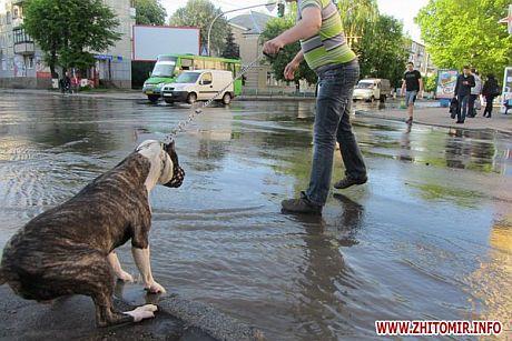 Никто не хочет в воду
