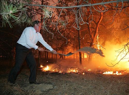 40 га леса горят в Черниговской области, - ГСЧС - Цензор.НЕТ 9314